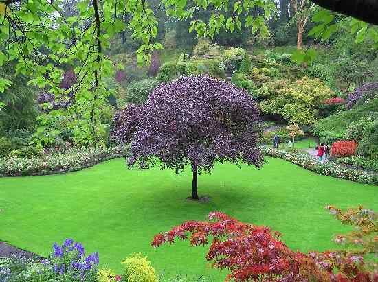 in the quarry garden O jardim mais bonito do mundo
