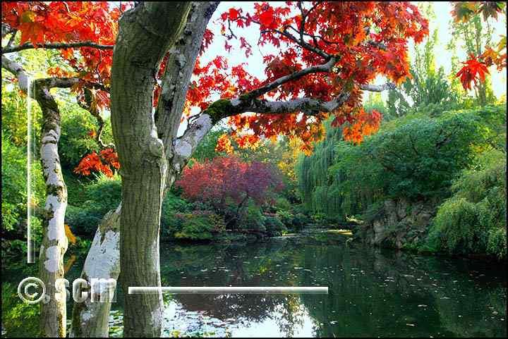 jardim3 O jardim mais bonito do mundo