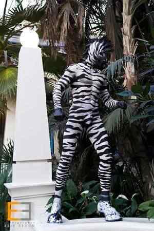 Zebra 2 Pessoas esquisitas que só queriam ser diferentes