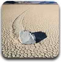 pedras que andam Artigos legais do Mundo Gump