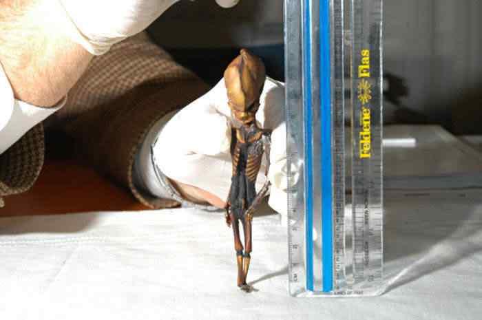 chile alien110906a Guardou o ET na geladeira e foi ver televisão.   3 Casos de pessoas que alegaram ter aliens guardados em casa