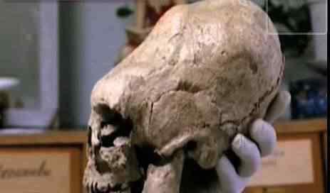 cranio1 Mais um crânio alongado descoberto na Sibéria