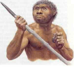 homo erectus Mais um crânio alongado descoberto na Sibéria