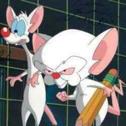 20120315131927 Top lista dos ratinhos infantis