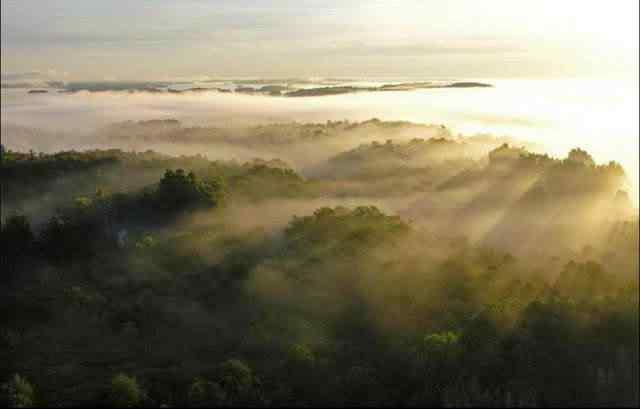 Imagem3 O rio das mil Ilhas absurdamente sensacionais