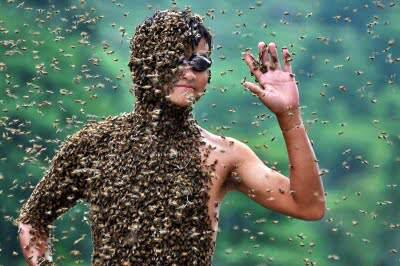 Imagem abelhas O bizarro campeonato de masturbação na China e outros concursos bizarros