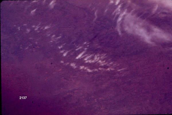 sky3pix2137 1 O mistério do satélite vermelho
