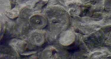 pedacos Mais uma peça metálica supostamente extraterrestre é encontrada