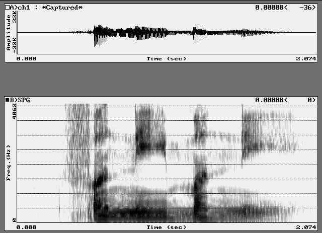 voz espectograma Falando com espíritos pelo... Skype?