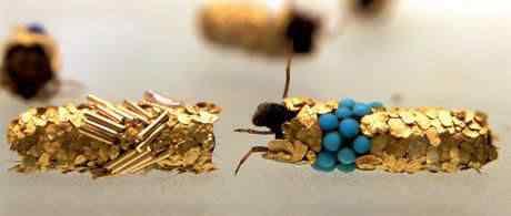duprat3 Jóias feitas por insetos
