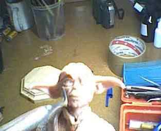 yoda clip image014 Criando o Yoda