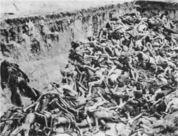 Uma das inúmeras valas comuns nazistas, repletas de cadáveres