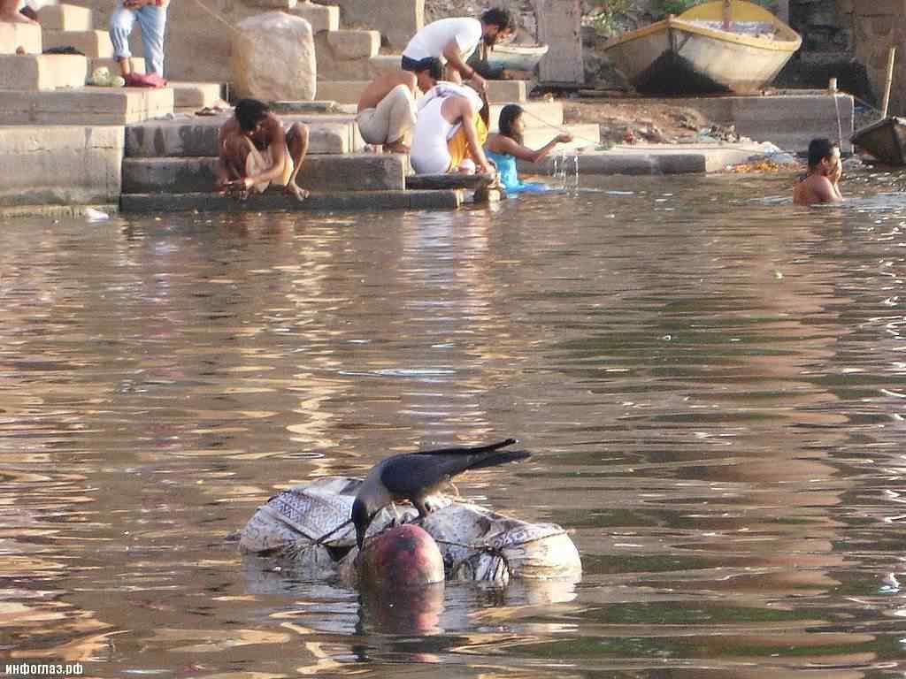 india029 A cidade dos mortos