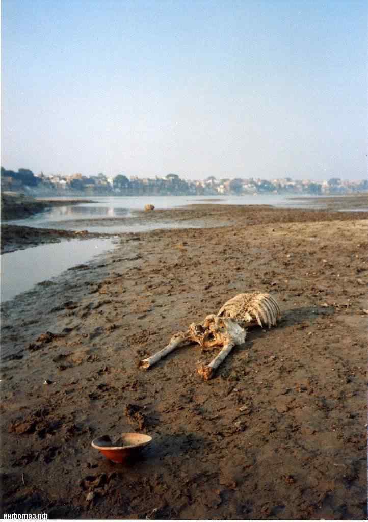 india039 A cidade dos mortos