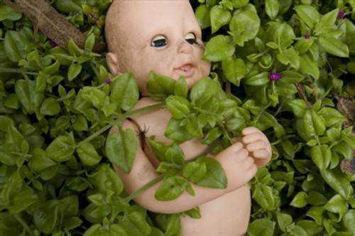 boneca morta3 MEDO: A tenebrosa ilha das bonecas