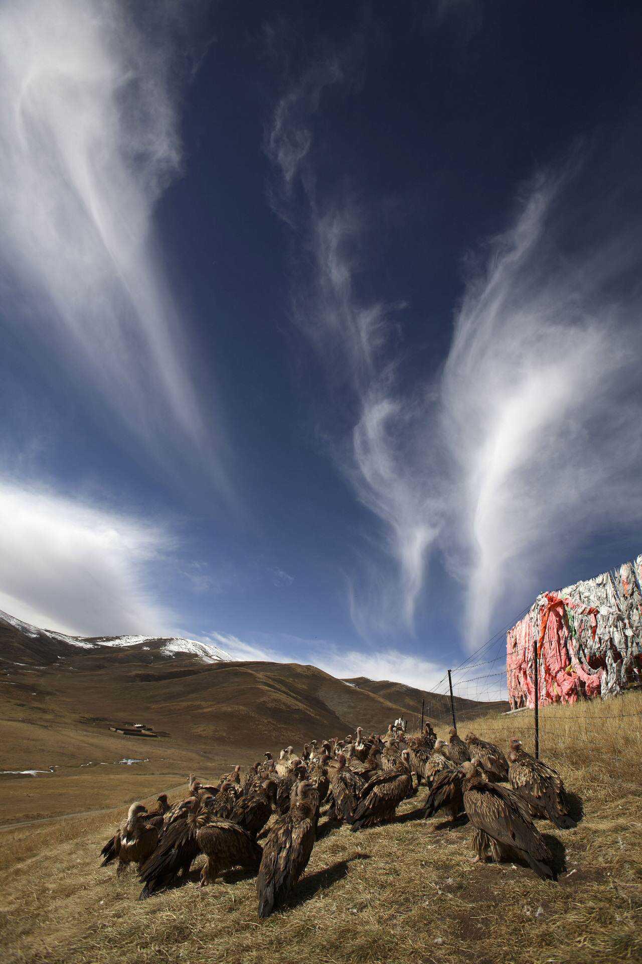 0 ef766 e43787d8 orig Sepultamento celestial no Tibete (AVISO: não recomendado para pessoas impressionáveis)
