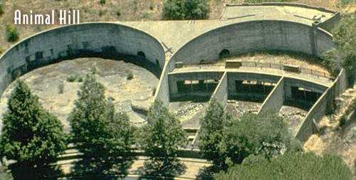 zoo main 01 O incrível Castelo Hearst