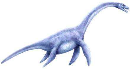 Plesiosaurus Monstro de Loch Ness fotografado novamente. Desta vez, do céu. Será?