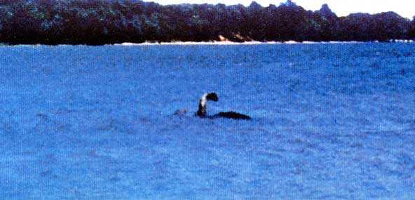 champ Monstro de Loch Ness fotografado novamente. Desta vez, do céu. Será?