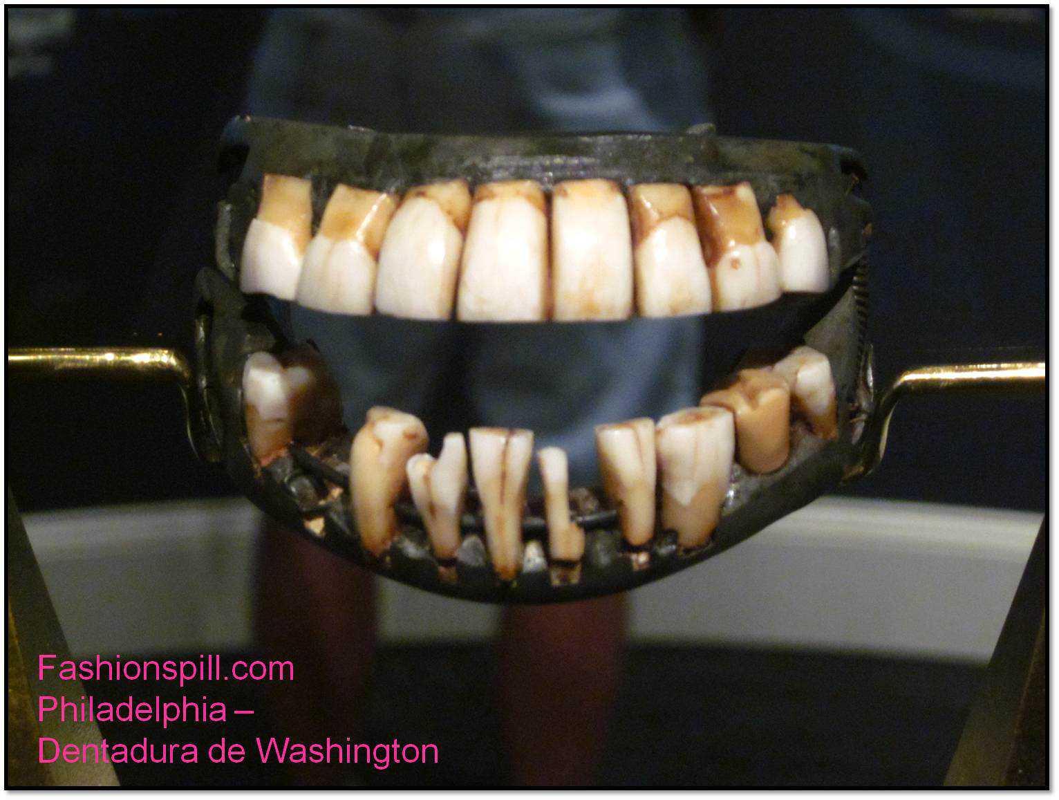 philadelphia dentadura de washington 15 bizarrices envolvendo dentes