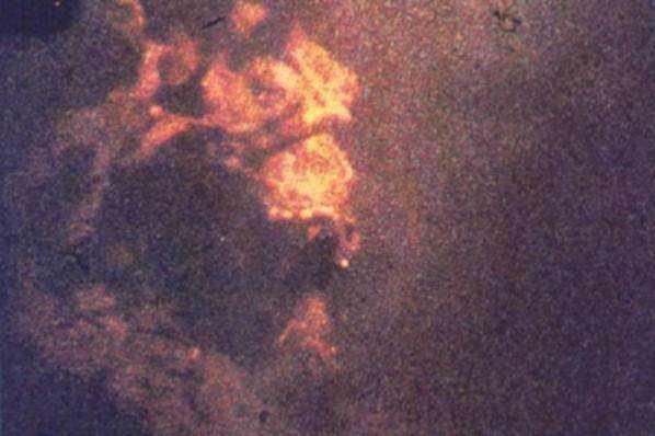 rines1975a Monstro de Loch Ness fotografado novamente. Desta vez, do céu. Será?