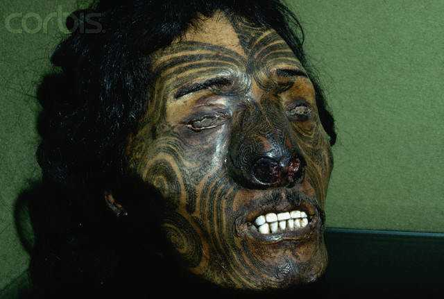 Preserved Head of Maori Chief