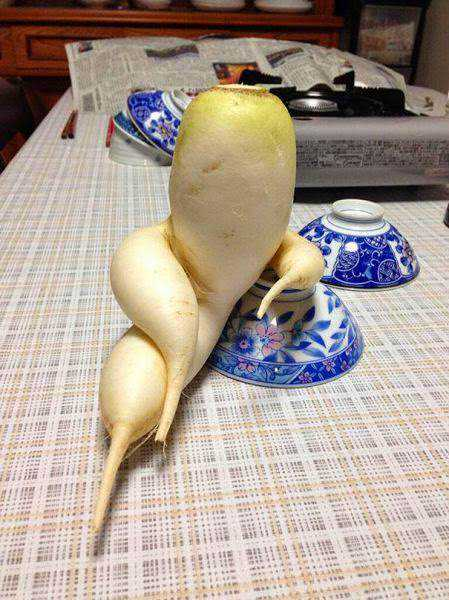 vegetables that are desperately trying to be something else 640 06 Os vegetais mais bizarros do mundo