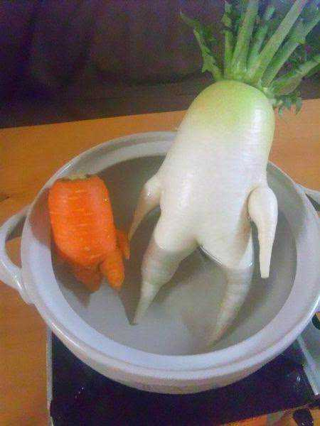 vegetables that are desperately trying to be something else 640 11 Os vegetais mais bizarros do mundo