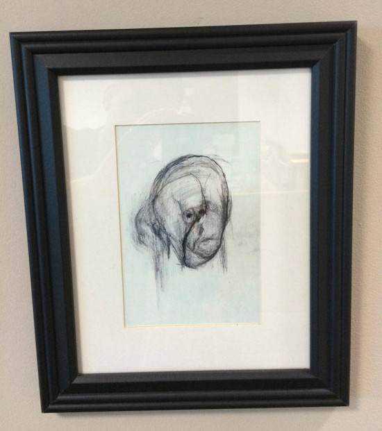 William Utermohlen alzheimer9 550x621 Artista com o Mal de Alzheimer faz seu autorretrato até esquecer como desenha