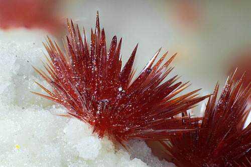 adf2c367d9ff37ff87548ad9a300c959 10 incríveis pedras preciosas vermelhas