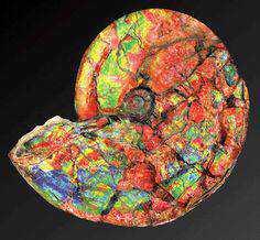 efe506bdc0ecd338a372e916282db892 Top 10 pedras preciosas multicoloridas