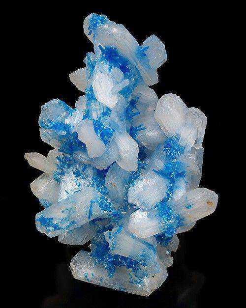 f43ce55fde214e837b1f5d94f8b4e338 Dez pedras azuis de pirar o cabeção