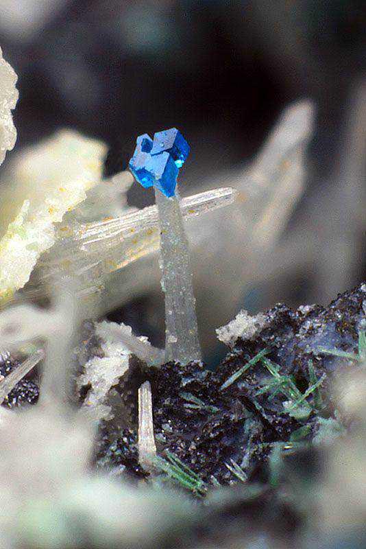 f99c045a47290d79a73f22512c0e0734 Dez pedras azuis de pirar o cabeção