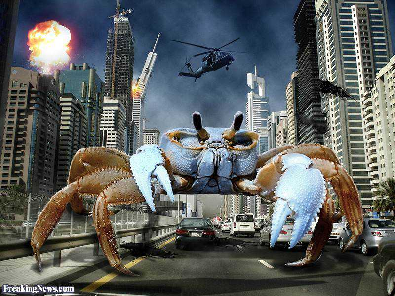 Giant-Crab-in-the-City--37569