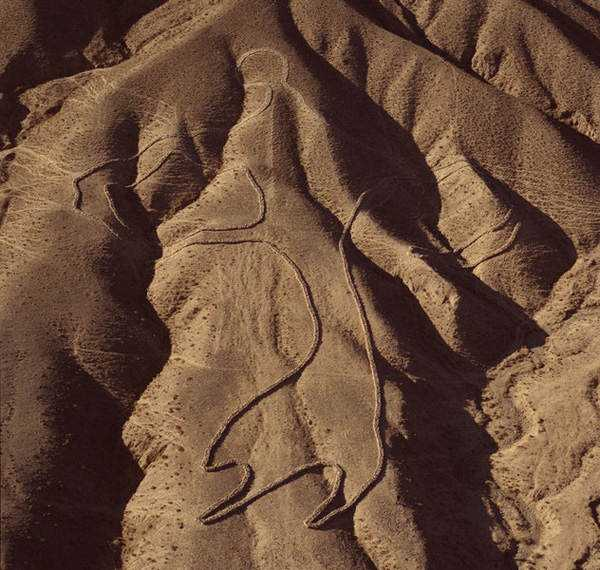 Andrew Rogers 7 Desenhos para serem vistos dos céus: O mistério dos geoglifos pelo mundo