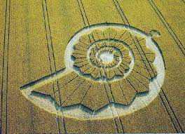 images 84 Desenhos para serem vistos dos céus: O mistério dos geoglifos pelo mundo