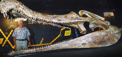 sarcosuchus Crocodilo gigante
