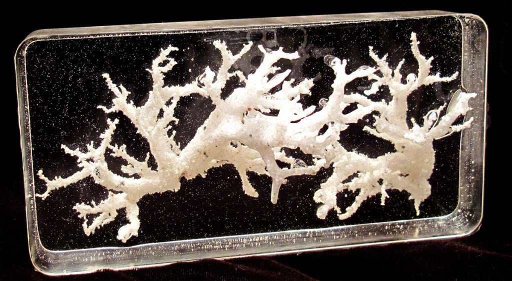 Preserved Fulgerites Petrified Lightning 1024x561 Criatura flagrada pela NASA?! Será que há vida em Marte mesmo?