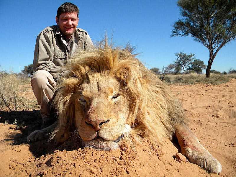 lion 2b Caçador: O pior do lixo humano