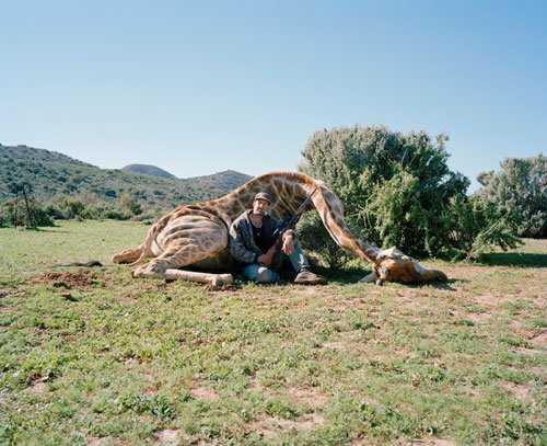trophy hunter giraffe Caçador: O pior do lixo humano