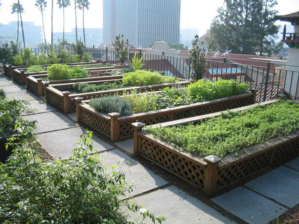 Urban agriculture raised beds Fazendinha feliz e os ratos do meu pai