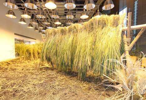 dezeen pasona urban farm 26 Fazendinha feliz e os ratos do meu pai