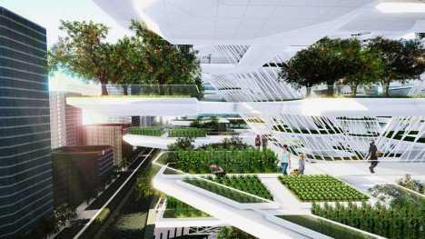 urban farming korea 2 468x263 Fazendinha feliz e os ratos do meu pai