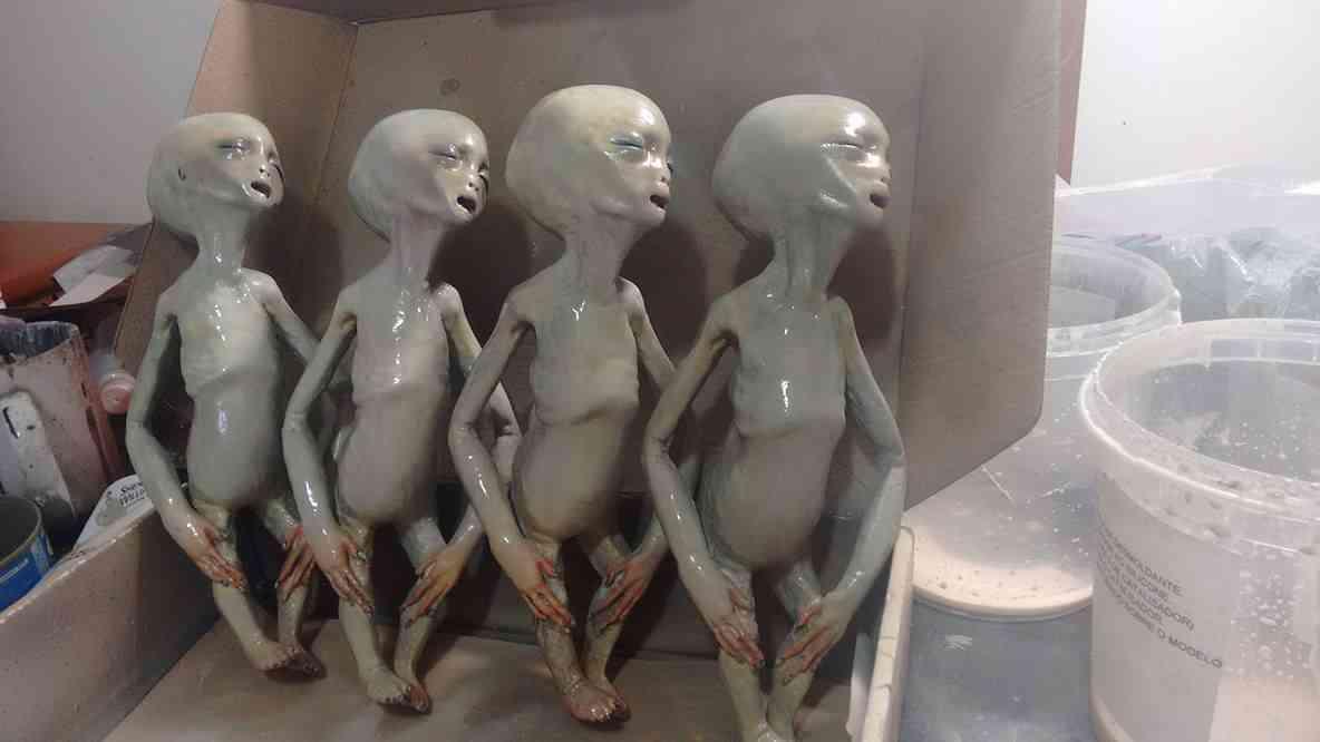 13113277 1436878063024663 521692848 o Feto alien no tubo