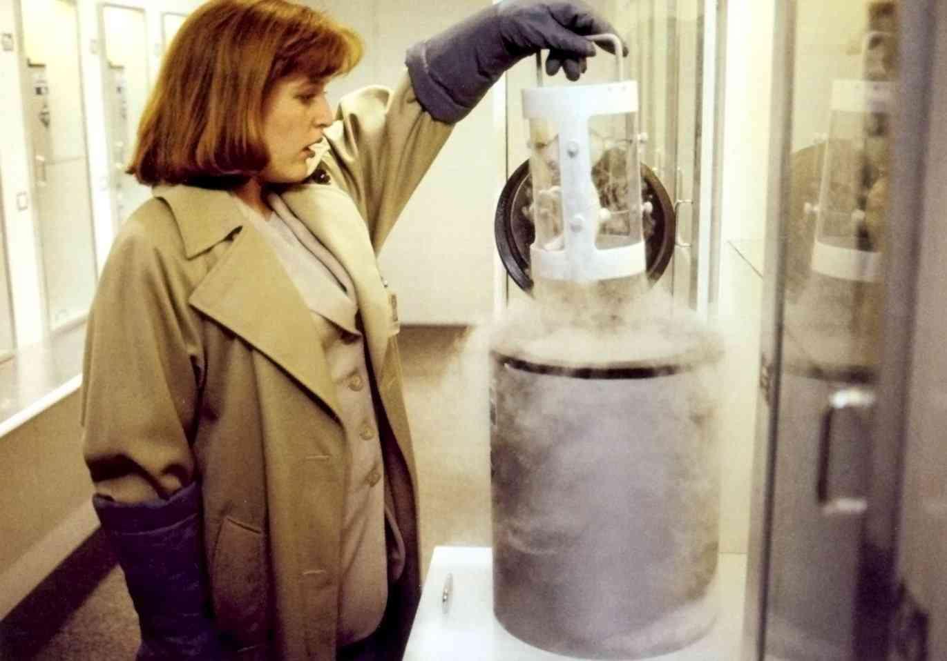 Dana Scully Erlenmeyer Flask Alien Fetus Feto alien no tubo