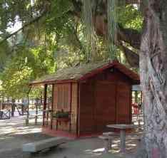 campo de sao bento e1460227635890 Uma mini casa de madeira barata de construir