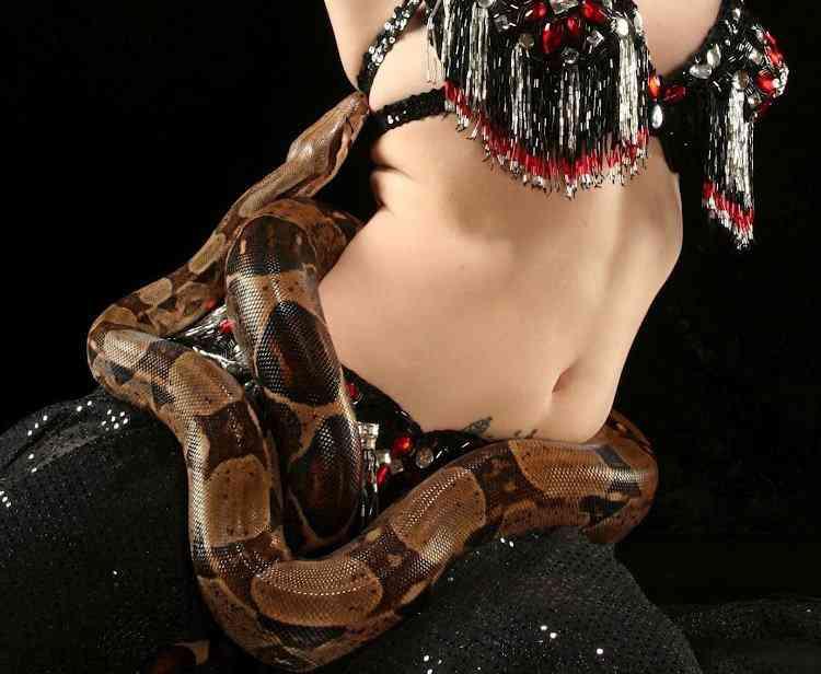 cobraaa Dançarina faz presepada no palco com cobra, é mordida e morre ali mesmo