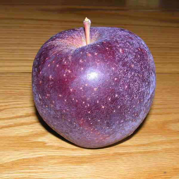 BlackOxford A maçã mais bizarra que você já viu