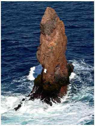 fig01 02 Bizarro: Será um monstro marinho a coisa flagrada pelo Google Earth?
