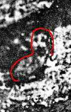 image030 O mistério da Virgem de Guadalupe